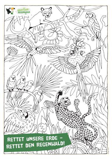 Ausmalbilder Dschungel Gratis | Kinder Ausmalbilder
