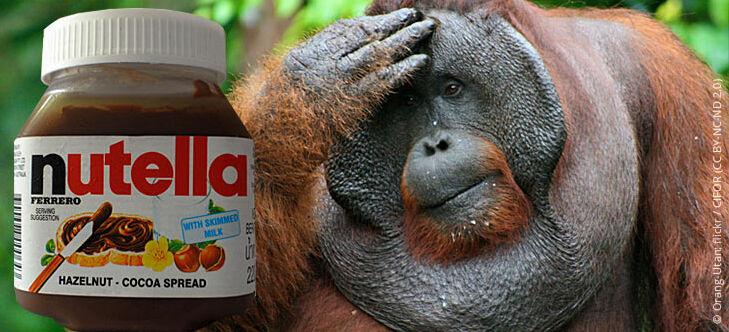 Palmöl Orang Utan